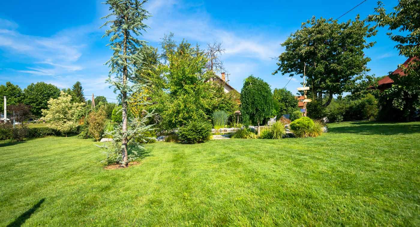 7 Ways To Create An Eco-Friendly Garden