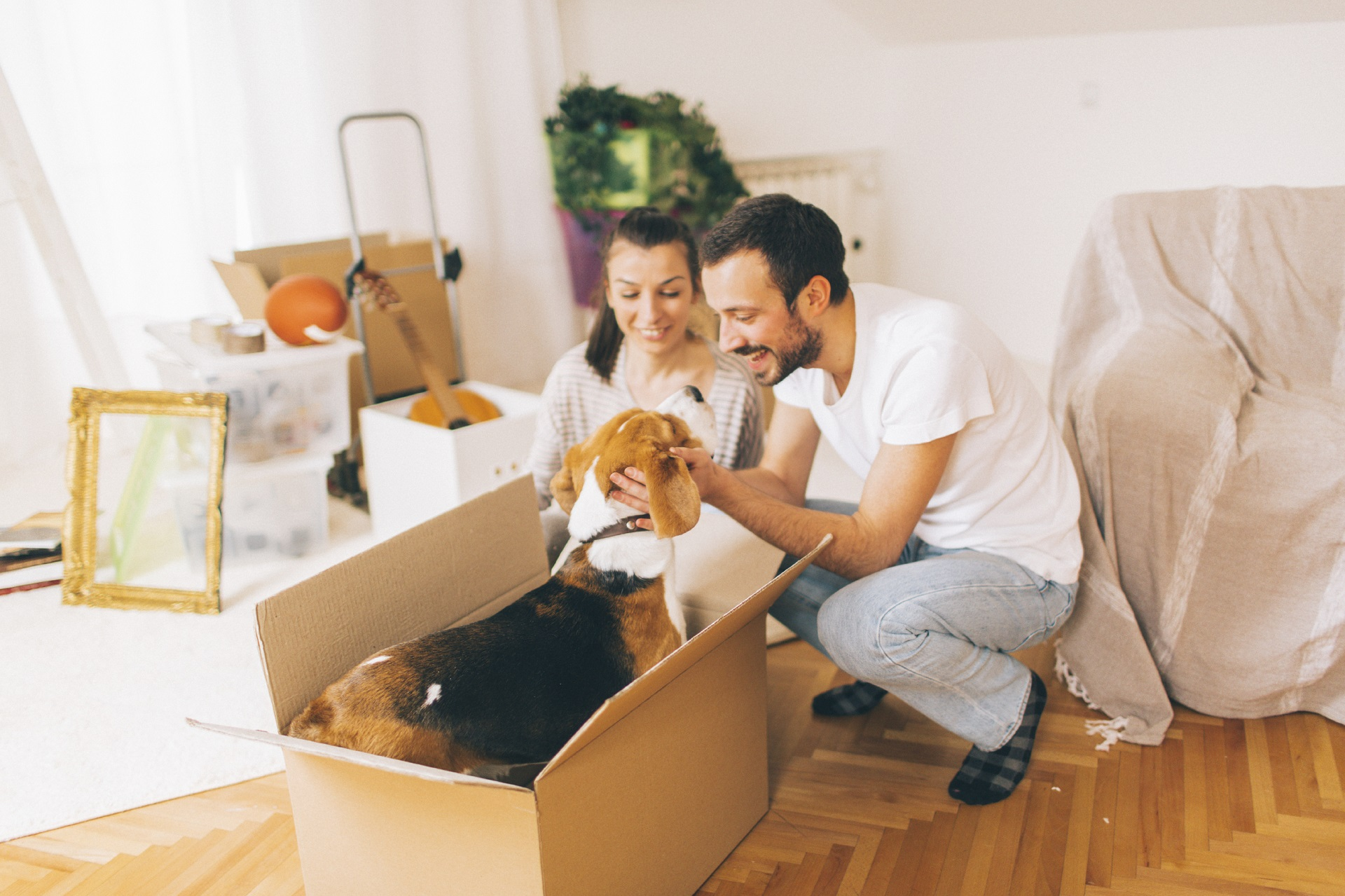 How Pet-Friendly Is Your Property?