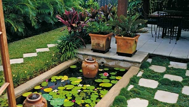 How To Create a Low-Maintenance Garden