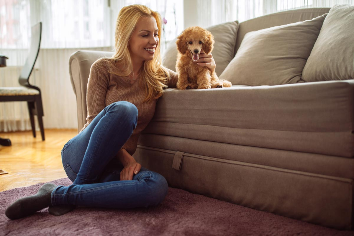 Top Tips For Pet-Proofing Your Home